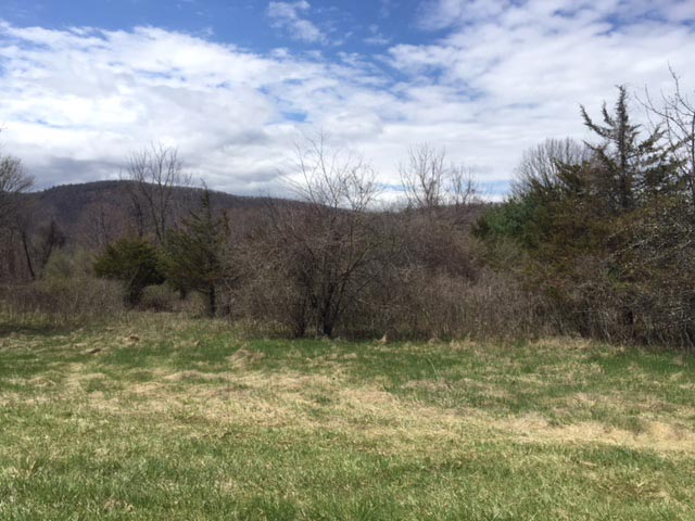Land for Sale Esopus NY